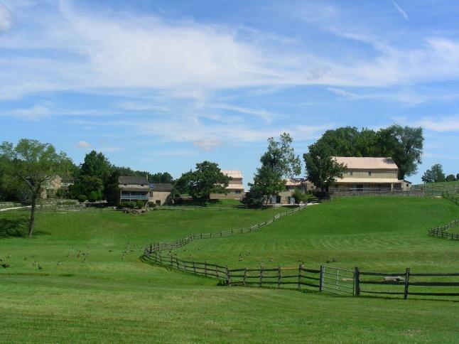 Gill Farm 2014 009